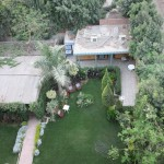 Ibis Garden from Roof