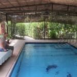 Ibis Gardens Pool
