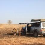 Gedaref Wild Camp