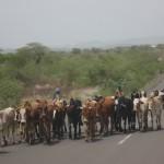 Typical Ethiopian Road