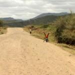 Ethiopian Street Dancers Again