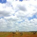 Kenyan Clouds
